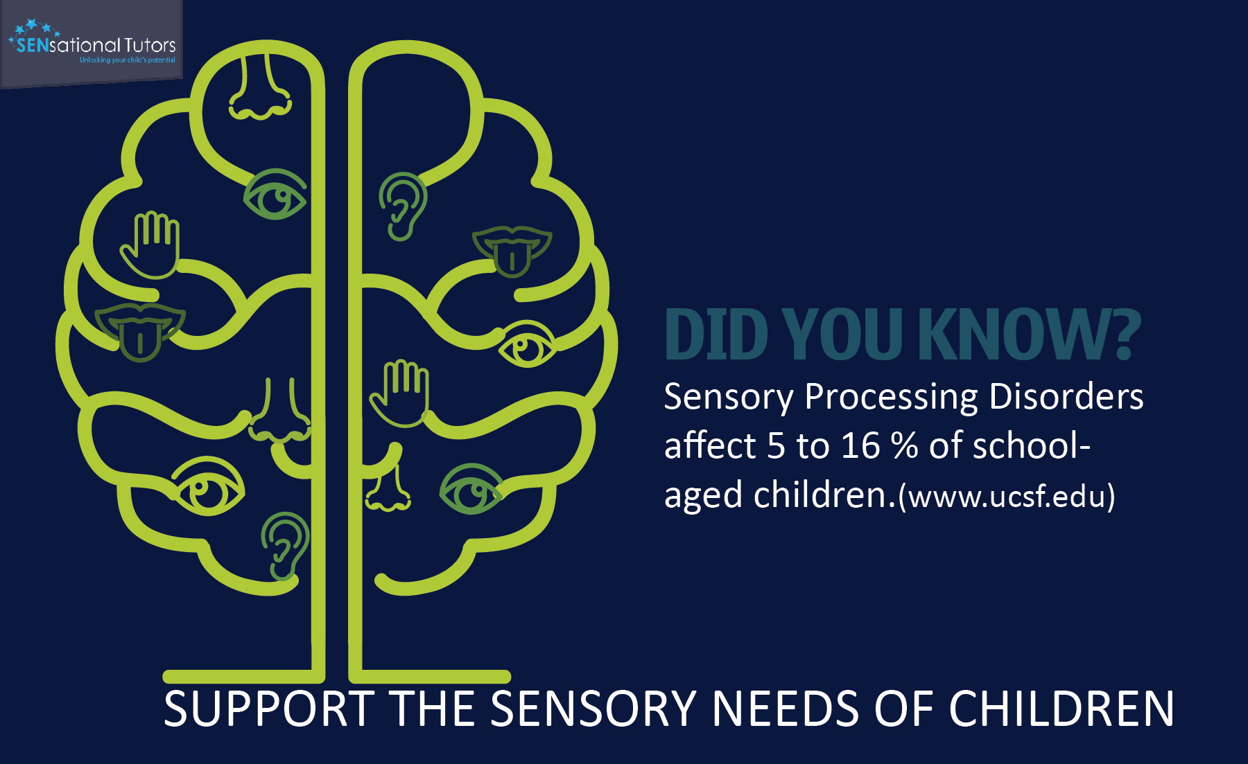 Sensory Processing Disorder (SPD) | SENsational Tutors | SEN Private Tutors